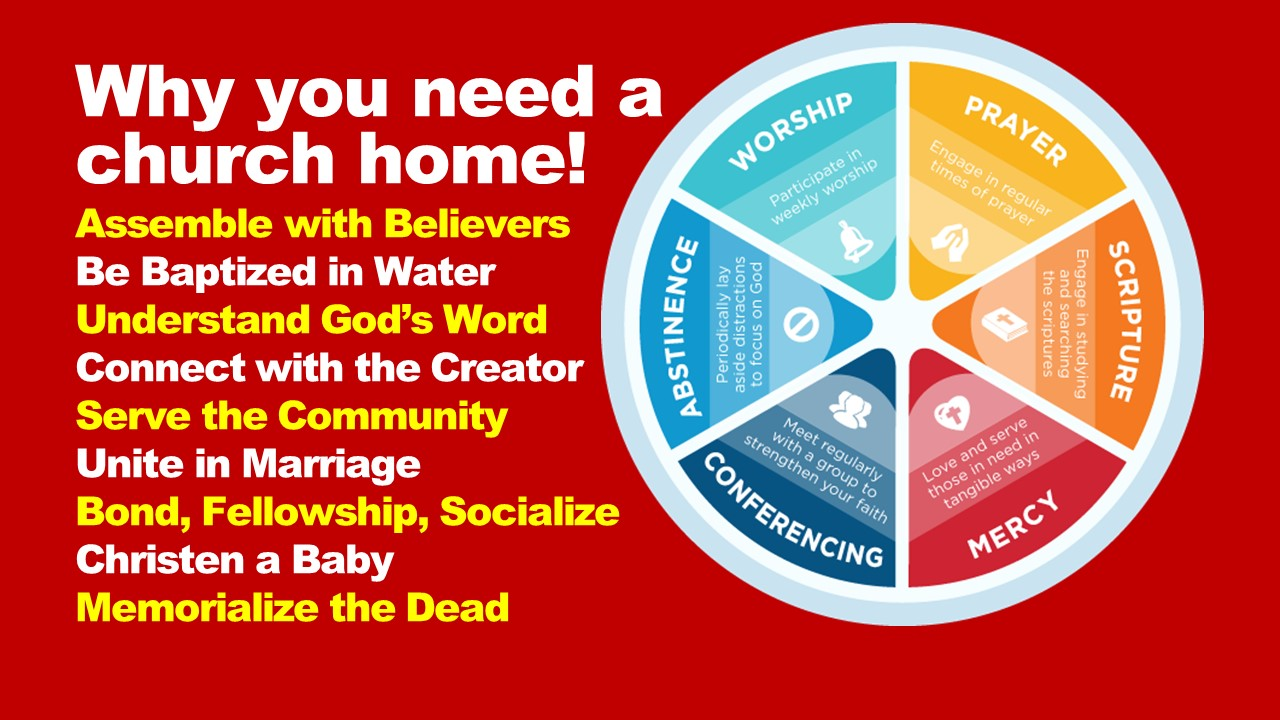 Why you need a church home!
